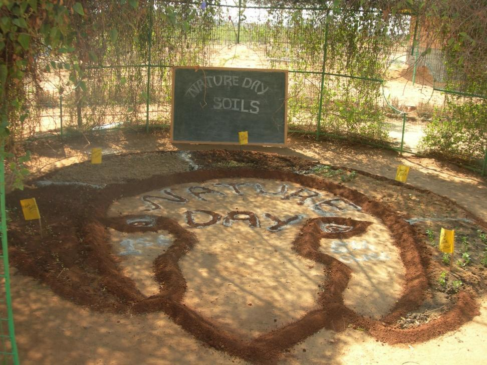 Art installation with soil in the Green class room